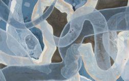 Semesterkurs Maleri 3 (Abstrakt); tirsdag ettermiddag 12:30-15:30, med oppstart 21. januar